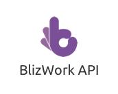 API BlizWork